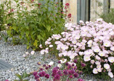 Rosaroter Eingangsteppich