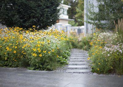 Blumenwiese hoch Zehn
